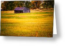 Shed in Sunlight Greeting Card by Marilyn Hunt