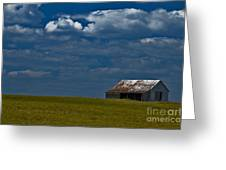 Shed In The Light Greeting Card by Susan Yates