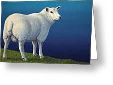 Sheep At The Edge Greeting Card by James W Johnson