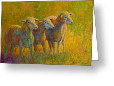 Sheep Trio Greeting Card by Marion Rose