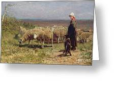 Shepherdess Greeting Card by Anton Mauve