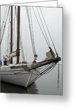 Ship 21 Greeting Card by Joyce StJames