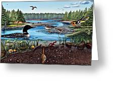 Ship Harbor Mudflat In Acadia National Park Greeting Card by Logan Parsons
