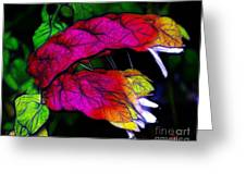 Shrimp Plant Greeting Card by Judi Bagwell
