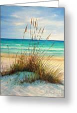 Siesta Key Beach Dunes  Greeting Card by Gabriela Valencia
