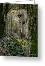 Silent Sentinel Greeting Card by Priscilla Richardson