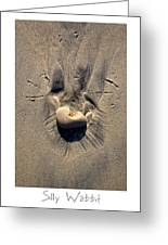 Silly Wabbit Greeting Card by Peter Tellone