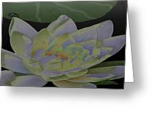 Simple Lily Greeting Card by Debra     Vatalaro