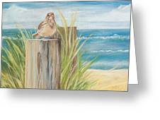 Singing Greeter At The Beach Greeting Card by Michelle Wiarda