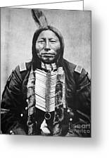 Sioux: Crow King Greeting Card by Granger