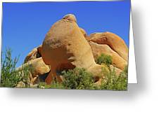 Skull Rock Joshua Tree National Park California Greeting Card by Christine Till