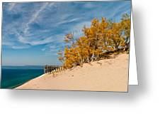 Sleeping Bear Overlook Greeting Card by Larry Carr