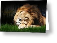 Sleeping Lion Greeting Card by Julie L Hoddinott