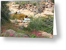 Slide Rock with Pink Wildflowers Greeting Card by Carol Groenen