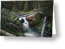 Small Stream In The Lost Wilderness 070810-1612 Greeting Card by Kenneth Shanika