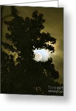 Smoke Dragon Tree Swallows Moon Greeting Card by CML Brown