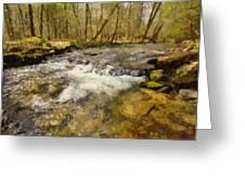 Smokey Mt. Stream Greeting Card by Paul Bartoszek