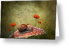 Snail Pace Greeting Card by Ian Barber