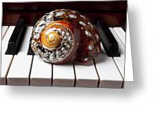 Snail Shell On Keys Greeting Card by Garry Gay