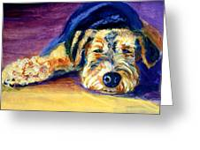 Snooze Airedale Terrier Greeting Card by Lyn Cook