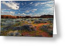 Snow Canyon Evening Glow Greeting Card by William Gillam