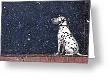 Snow Dog Greeting Card by Yury Bashkin