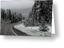 Snow On Road Through Forest Greeting Card by Linda Phelps