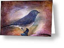 Snowbird Stories... Greeting Card by Arthur Miller