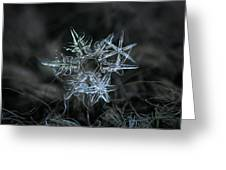Snowflake Of 19 March 2013 Greeting Card by Alexey Kljatov