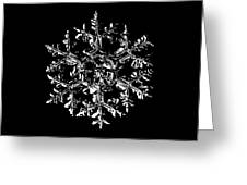 Snowflake Vector - Gardener's Dream Black Version Greeting Card by Alexey Kljatov