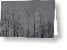 Snowy Winter Night Greeting Card by Marion McCristall