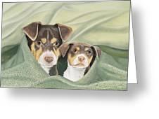 Snuggle Buddies Greeting Card by Barbara Keel