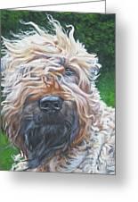 Soft Coated Wheaten Terrier Greeting Card by Lee Ann Shepard