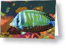Something Fishy Greeting Card by Deborah MacQuarrie