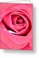 Soul Searching Greeting Card by Gwyn Newcombe