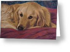 Soulfull Eyes Greeting Card by Billie Colson
