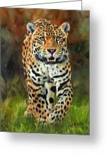 South American Jaguar Greeting Card by David Stribbling
