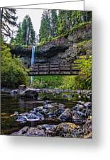 South Silver Falls With Bridge Greeting Card by Darcy Michaelchuk