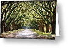 Southern Way Greeting Card by Carol Groenen