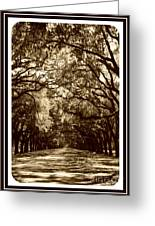 Southern Welcome In Sepia Greeting Card by Carol Groenen