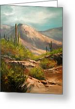 Southwest Beauty Greeting Card by Robert Carver