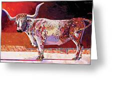 Southwest Longhorn Greeting Card by Bob Coonts