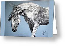 Spanish Horse Greeting Card by Melita Safran