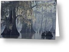 Spanish Moss Drapes Old Cypress Trees Greeting Card by John Eastcott And Yva Momatiuk