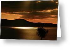 Spotlight Bay Greeting Card by Aidan Moran