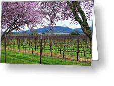 Spring Blossoms Near Calistoga Greeting Card by Charlene Mitchell