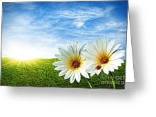 Spring Greeting Card by Carlos Caetano