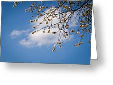 Spring Cloud Greeting Card by Andy Smy