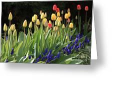 Spring Garden Greeting Card by Carol Groenen