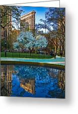 Spring In Madison Square Park Greeting Card by Chris Lord